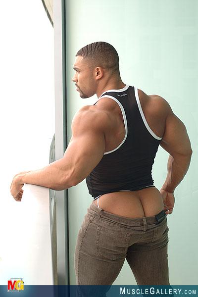 Free Gay Muscle Galleries 95