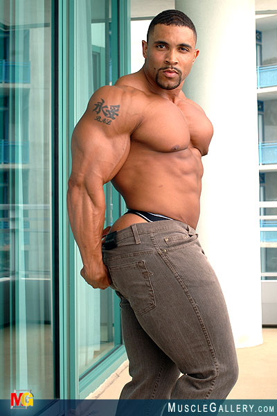 Free Gay Muscle Galleries 90